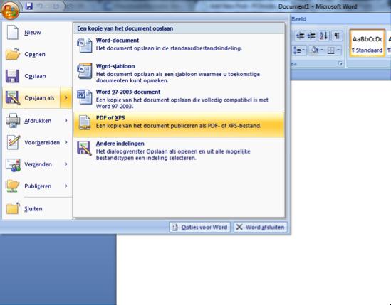 cv opslaan als pdf