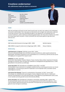 CV Bas Klein Geltink - sollicitatietrainer